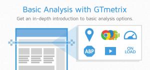gtmetrix-basic-options