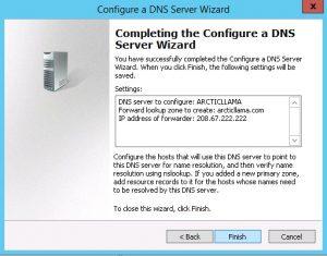 DNS10